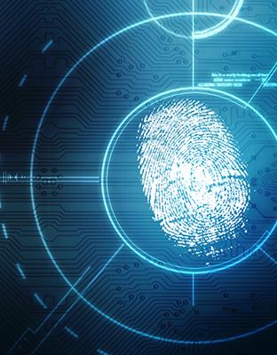 Desarrollo de identidad digital